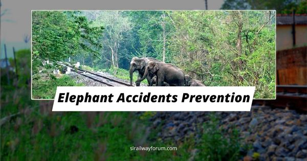Elephant-Train Collisions Prevention Project